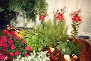 Trade Show garden